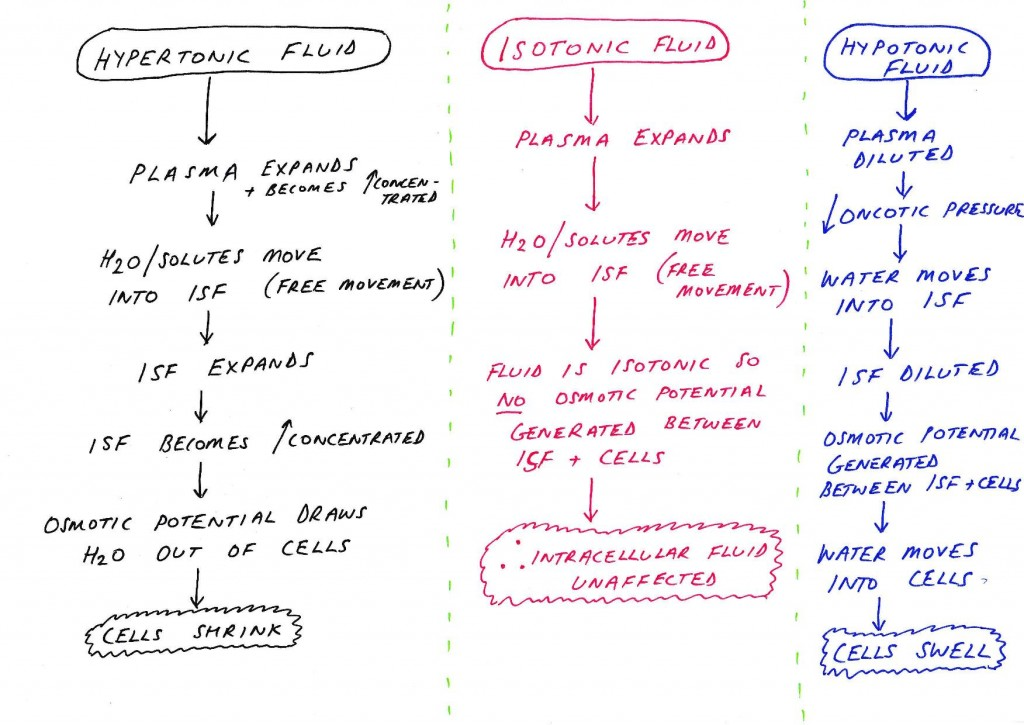 Ingesting different fluids diagram-page-001